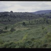 https://repository.erc.monash.edu/files/upload/Asian-Collections/Myra-Roper/indonesia-02-172.jpg