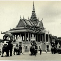 Royal elephants in front of palace dance hall