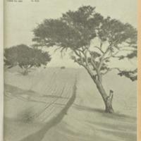 https://repository.monash.edu/files/upload/Asian-Collections/Sin-Po/ac_1941_06_14.pdf