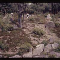 https://repository.erc.monash.edu/files/upload/Asian-Collections/Myra-Roper/japan-050.jpg