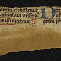 Fragment no. 17 - Bischoff Manuscript Collection