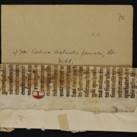 Fragment no. 14 - Bischoff Manuscript Collection