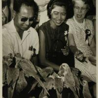 https://repository.erc.monash.edu/files/upload/Asian-Collections/Noel-Deschamps/ND6-15.jpg