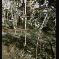 https://repository.erc.monash.edu/files/upload/Asian-Collections/Myra-Roper/indonesia-01-138.jpg