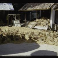 https://repository.erc.monash.edu/files/upload/Asian-Collections/Myra-Roper/indonesia-03-190.jpg