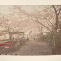 https://repository.erc.monash.edu/files/upload/Rare-Books/Japanese-Albums/jp-01-021.jpg