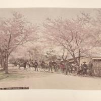 https://repository.erc.monash.edu/files/upload/Rare-Books/Japanese-Albums/jp-01-028.jpg