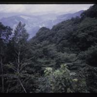 https://repository.erc.monash.edu/files/upload/Asian-Collections/Myra-Roper/japan-035.jpg