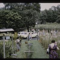 https://repository.erc.monash.edu/files/upload/Asian-Collections/Myra-Roper/singapore-027.jpg