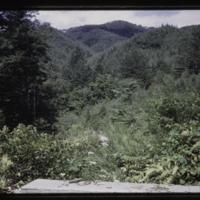 https://repository.erc.monash.edu/files/upload/Asian-Collections/Myra-Roper/japan-031.jpg