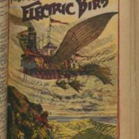 https://repository.monash.edu/files/upload/Rare-Books/Aldine_Frank-Reade/rb_Aldine_Frank-Reade-067.pdf