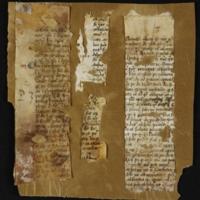 Fragment no. 15 - Bischoff Manuscript Collection