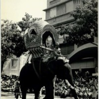 King's kop howdah (Elephant chair)
