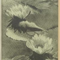 ac_1941_06_28.pdf