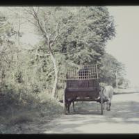 https://repository.erc.monash.edu/files/upload/Asian-Collections/Myra-Roper/thailand-01-012.jpg