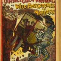 https://repository.monash.edu/files/upload/Rare-Books/Aldine_Frank-Reade/rb_Aldine_Frank-Reade-006.pdf
