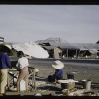 https://repository.erc.monash.edu/files/upload/Asian-Collections/Myra-Roper/thailand-02-187.jpg