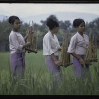 https://repository.erc.monash.edu/files/upload/Asian-Collections/Myra-Roper/indonesia-02-049.jpg