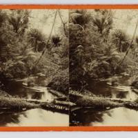 https://repository.erc.monash.edu/files/upload/Rare-Books/Stereographs/Aust-NZ/anz-112.jpg