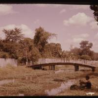 https://repository.erc.monash.edu/files/upload/Asian-Collections/Myra-Roper/thailand-03-013.jpg