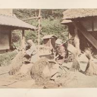 https://repository.erc.monash.edu/files/upload/Rare-Books/Japanese-Albums/jp-01-049.jpg