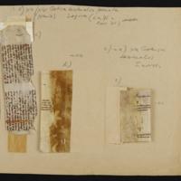Fragment no. 23 - Bischoff Manuscript Collection