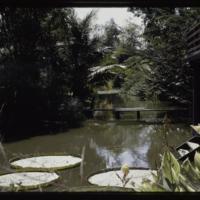 https://repository.erc.monash.edu/files/upload/Asian-Collections/Myra-Roper/thailand-02-183.jpg