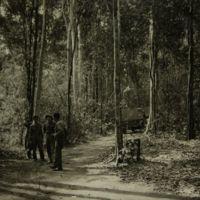 https://repository.erc.monash.edu/files/upload/Asian-Collections/Sihanouk/Images/NS21-09.jpg