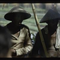 https://repository.erc.monash.edu/files/upload/Asian-Collections/Myra-Roper/indonesia-03-125.jpg