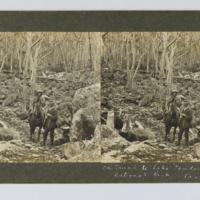https://repository.erc.monash.edu/files/upload/Rare-Books/Stereographs/Aust-NZ/anz-002.jpg