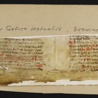 Fragment no. 16 - Bischoff Manuscript Collection