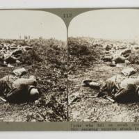 https://repository.erc.monash.edu/files/upload/Rare-Books/Stereographs/WWI/Realistic-Travels/rtp-045.jpg