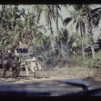 https://repository.erc.monash.edu/files/upload/Asian-Collections/Myra-Roper/thailand-02-111.jpg