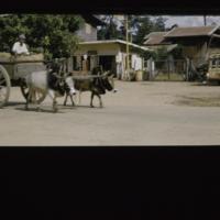 https://repository.erc.monash.edu/files/upload/Asian-Collections/Myra-Roper/thailand-01-035.jpg