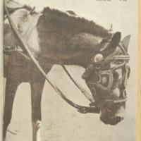 https://repository.monash.edu/files/upload/Asian-Collections/Sin-Po/ac_1941_05_17.pdf