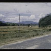 https://repository.erc.monash.edu/files/upload/Asian-Collections/Myra-Roper/thailand-02-195.jpg