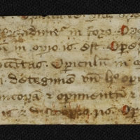 Fragment no. 5 - Bischoff Manuscript Collection