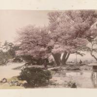 https://repository.erc.monash.edu/files/upload/Rare-Books/Japanese-Albums/jp-03-019.jpg