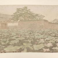 https://repository.erc.monash.edu/files/upload/Rare-Books/Japanese-Albums/jp-01-024.jpg
