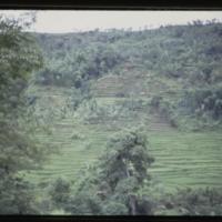 https://repository.erc.monash.edu/files/upload/Asian-Collections/Myra-Roper/indonesia-02-209.jpg