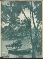 Sin Po : 11 October 1941