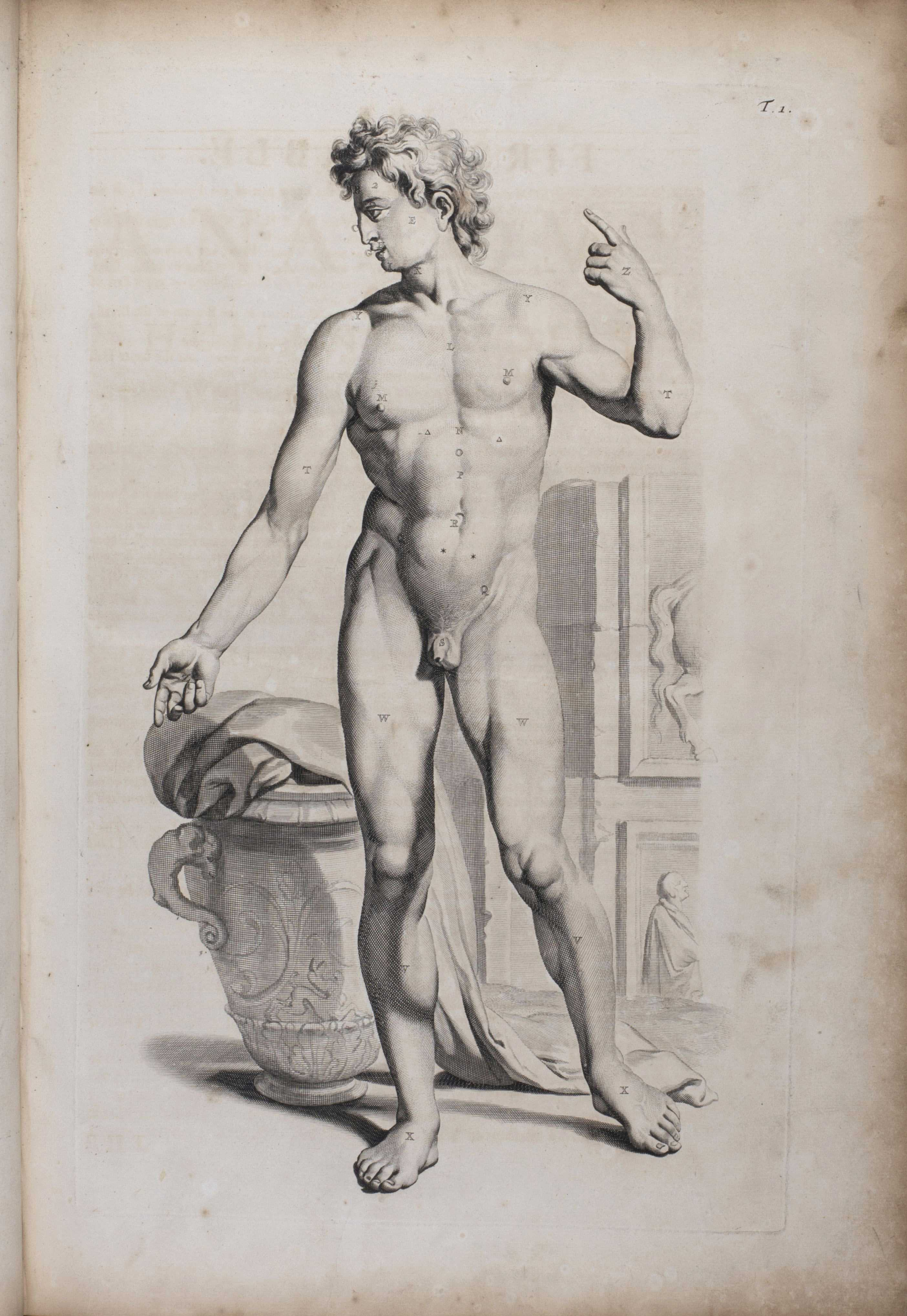 William Cowper's The anatomy of humane bodies, illustration